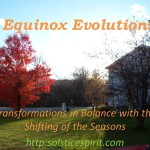 Equinox Button